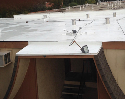 flat roof pros services